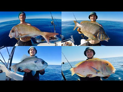 Mooloolaba Fishing Offshore 60+ Metres (Pearl,Snapper,Tusk,Emperor,Trout)