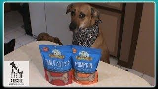 Yeti Dog Treat Review  | All Natural Dog Treats | Rescue Dogs Approved