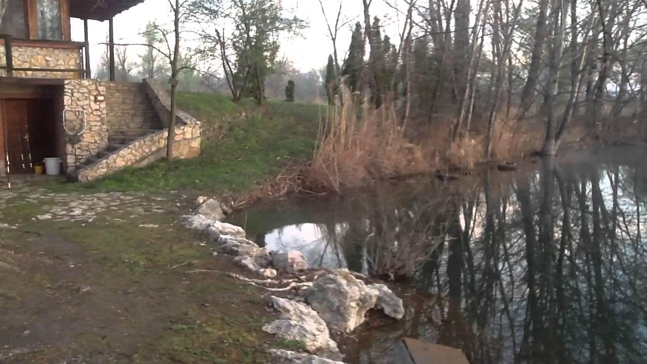 Grote visvijver te koop prijs samen 5 eur m2 youtube for Vijver te koop ardennen