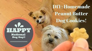 Foodmania Review Wwyew: Diy Peanut Butter Dog Cookies