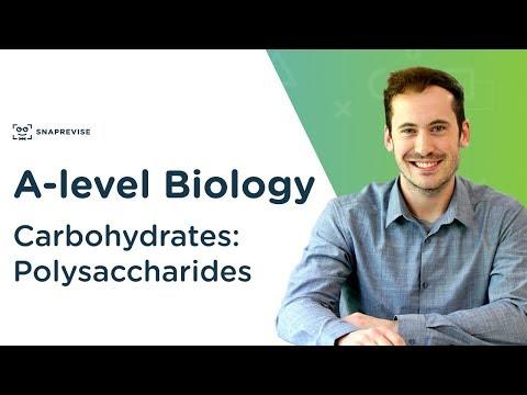 carbohydrates:-polysaccharides-|-a-level-biology-|-ocr,-aqa,-edexcel