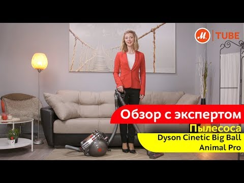 Обзор пылесоса Dyson Cinetic Big Ball Animal Pro с экспертом «М.Видео»