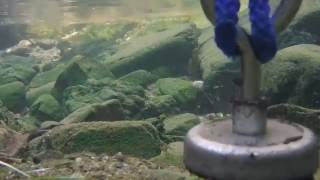 Magnet Fishing Inner City Creek: The Underwater Action