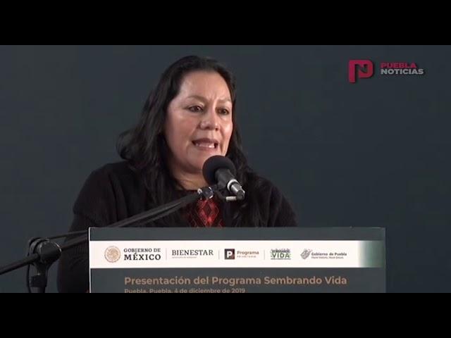 #PueblaNoticias Avanza Programa Sembrando Vida