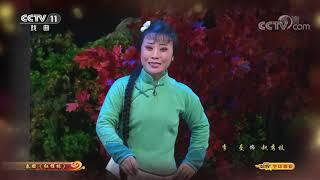 《CCTV空中剧院》 20191016 秦腔《红梢林》(访谈)| CCTV戏曲