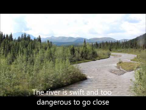 Alaska trip tips to tour Denali national Park
