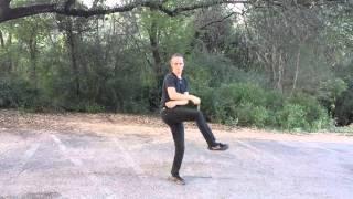 Chain Whip - Taoist in Black