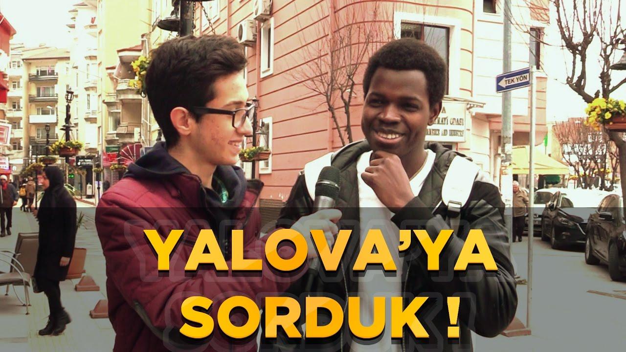 Yalova'ya Sorduk !