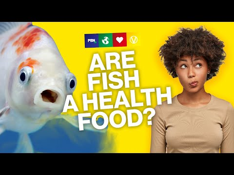 Is Eating Fish Healthy?