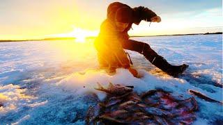 Зимняя рыбалка на Рузском водохранилище в глухозимье 2021 Ловля крупной плотвы в Курово