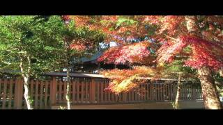 Iwama City In Autumn Colours 岩間 (紅葉)