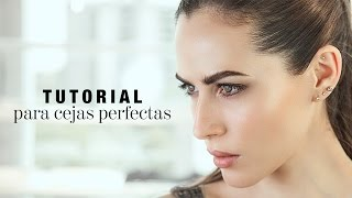 Tutorial para lograr cejas perfectas