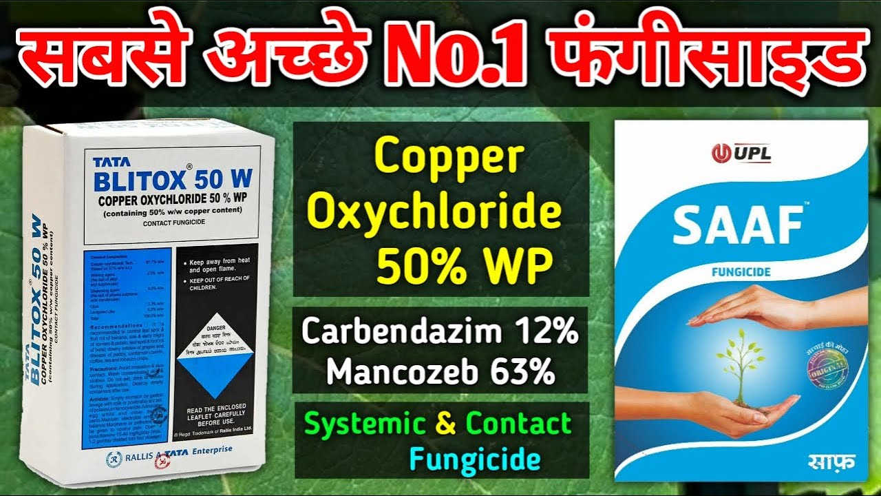 Top Quality Fungicide | Copper Oxychloride, Carbendazim, Mancozeb | UPL SAAF, Syngenta Blue Copper