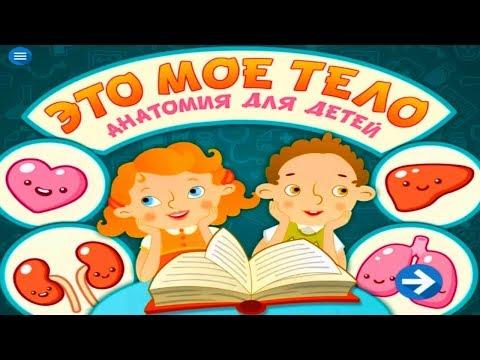 Анатомия для малышей мультфильм