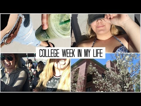 College Week in My Life // University of Nevada, Reno