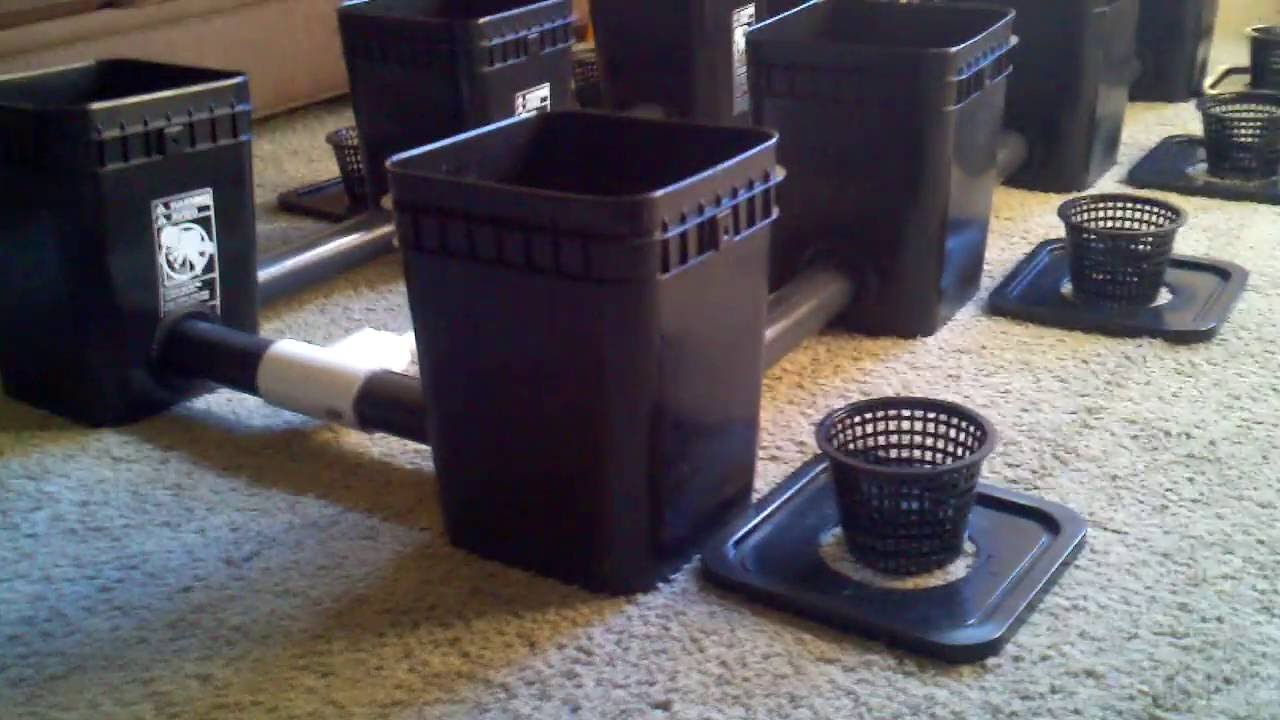 Naked High Flow Hydro flower2 recirculating dwc hydroponic growing system