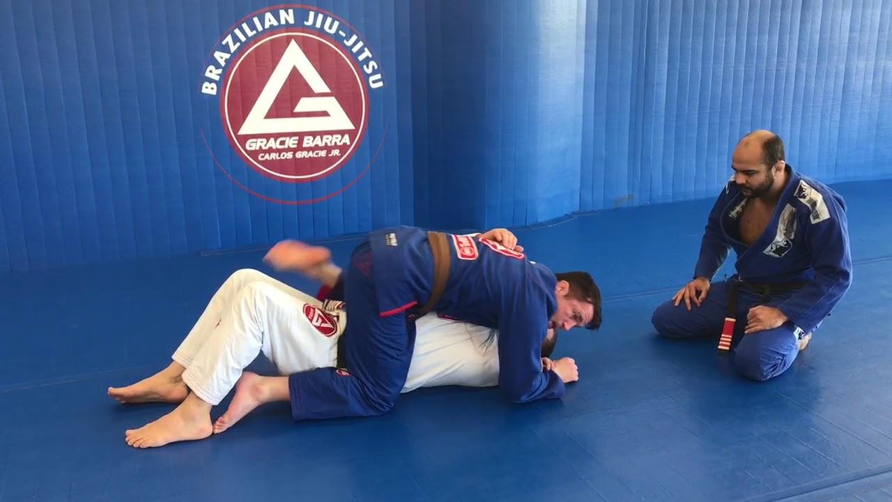 Jitsu theory jiu pdf brazilian and technique