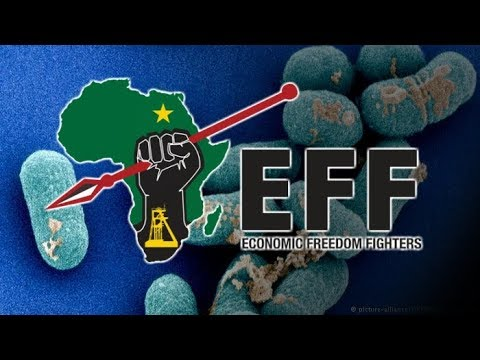 Economic Freedom Fighters blames government for listeriosis outbreak
