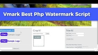 VMark Video Watermark - Crop - Trim Script (Tutorial)