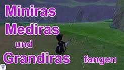 Miniras, Mediras und Grandiras fangen (Schwert) | Pokemon Schwert und Schild