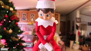 RICKY THE ELF TAKES A PISS IN MELISSA S PEPSI