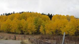 Best Fall Colors in US (must watch) - 7