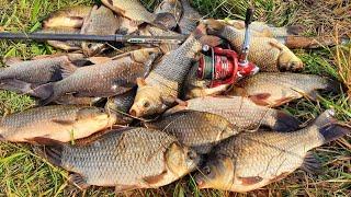 А ТАК ЛОВИТЬ КАРАСЯ бешеный клев крупного карася хитрость на карася рыбалка на карася ловля карася