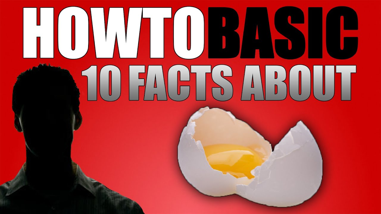 12 FACTS ABOUT HOWTOBASIC - YouTube