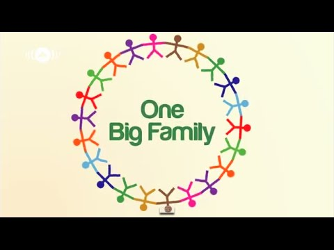 the big family The three big questions for a frantic family in the three big questions for a frantic family pat lencioni turns his sights on the most important organization in our lives the family.