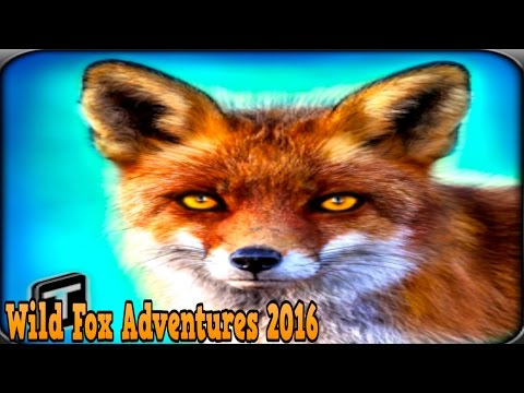 Wild Fox Adventures 2016-By Tapinator, Inc. (Ticker: TAPM) Simulation - iTunes/Android
