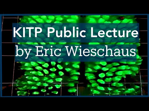 Eric Wieschaus: On Growth & Form of the Embryo: From Gene Expressions to Tissue Mechanics