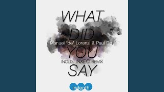 What Did You Say (Original Mix)