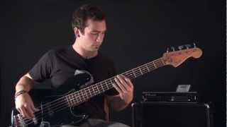 Invisible - Sebastian Leopardi (Ziva) Bass Licks