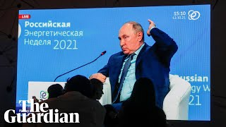 Claims that Russia is using energy as a weapon is nonsense, says Putin