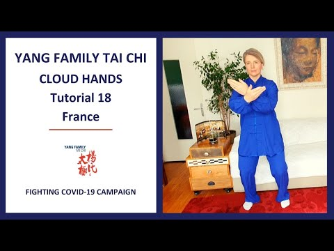 Fighting COVID-19 Campaign/ Cloud Hands Tutorial 18 / France