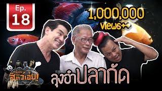 เพื่อนรักสัตว์เอ๊ย-ปลากัดลุงอ๋า-goldenbetta-in-thailand-l-ep-18
