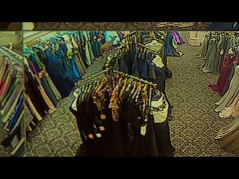 Deer terrorizes In Phase Fashions in New Dorp