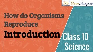 Class 10 Science How do Organisms Reproduce - Introduction
