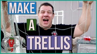 How To Make  A Trellis For Peas And Beans