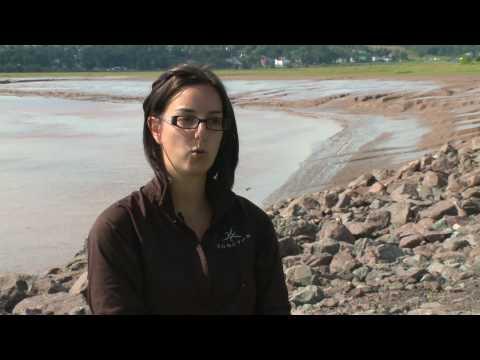 Les atouts de la ville de Moncton - Nouveau-Brunswick, Canada
