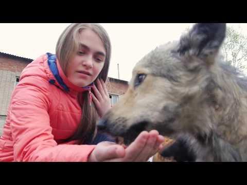 знакомства гор белорецк