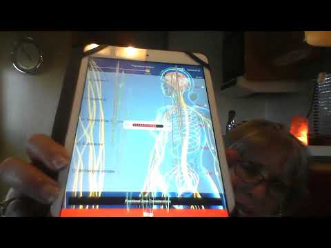 Multi-Focus video with a demonstration of the Insight Health App