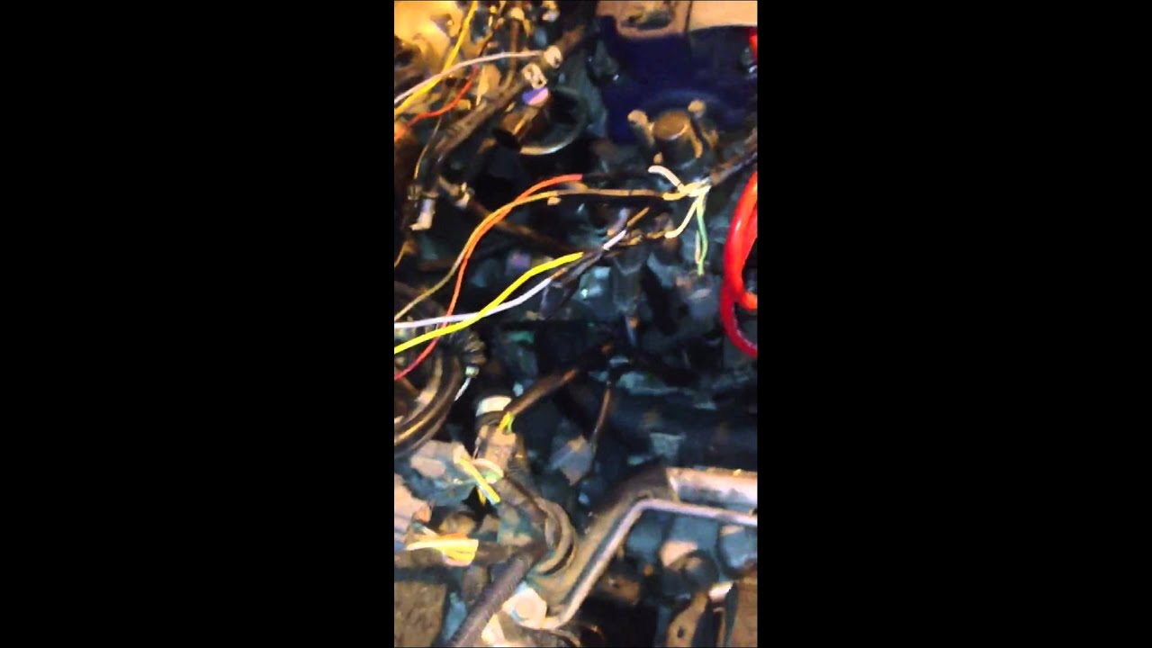jdm f20b dist wiring to 97 accord youtube h22a wiring harness f20b wiring harness [ 1280 x 720 Pixel ]