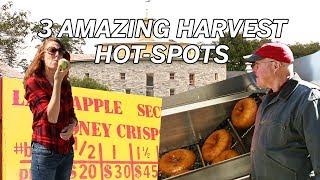 3 Amazing Harvest Hot-Spots
