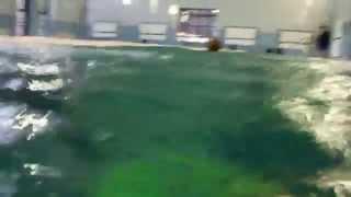 Бассейн аквапарка в Кобрине(Бассейн аквапарка в Кобрине., 2015-04-13T21:59:36.000Z)