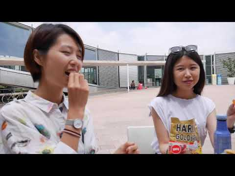 ASIAN TO SWISS / Our life in Switzerland (english subtitle)