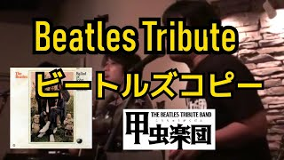 The Ballad of John and Yoko (The Beatles Cover)