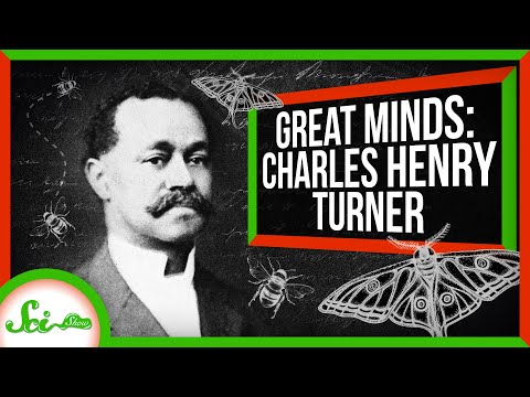 Bugs Aren't Brainless! | Great Minds: Charles Henry Turner