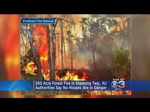 Crews Battle Large Forest Fire In Burlington County