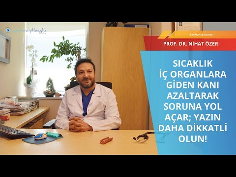 Prof  Dr  NİHAT ÖZER